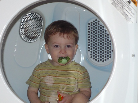 David in Dryer
