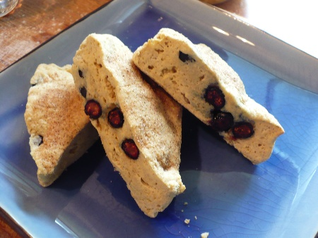 Fresh Blueberry Scones – Gluten Free, Casein Free